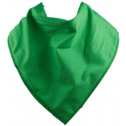 Robin Hood Bandana Bib - Size 2