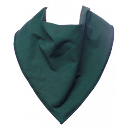 Bottle Green Bandana Bib - Size 2
