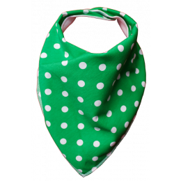 Green Tea Bandana Bib - Size 2